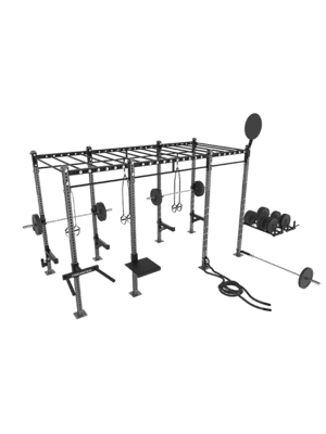 FreeMotion Fit Rig 14' Monkey Bar Rig With Accessories