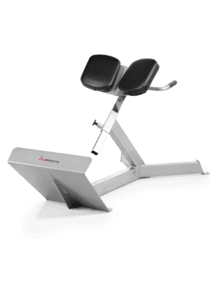 Free Motion Epic Free Weight Series 45 Degree Back Extension