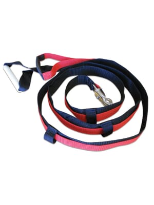 Prism Speed Training Quick-Release Leash